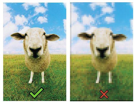 optimización correcta de una imagen para seo