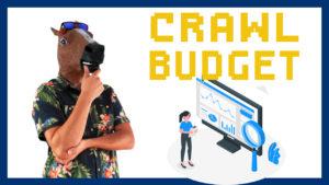 Guía Crawl Budget: Qué es y cómo optimizarlo
